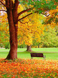 Autumn in Helsinki Garden. Autumn in Helsinki Public Garden Royalty Free Stock Image