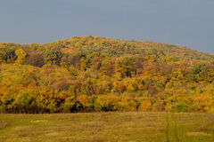 Autumn is here!. Hills and forests in the autumn light Royalty Free Stock Images