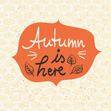 Autumn is here, template for autumn design Royalty Free Stock Photos