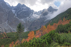 Autumn in High Tatra Mountains, Western Carpathians Royalty Free Stock Images