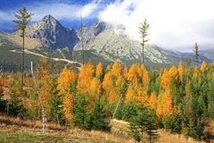 Autumn at High Tatras mountains, Slovakia royalty free stock images