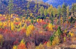 Autumn at High Tatras mountains, Slovakia Stock Photos