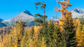 Autumn in High Tatras, Slovakia Stock Photo