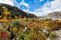Autumn in highland , Tibet, China stock photography