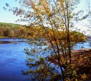 Autumn Highlights On The St Croix River - le Minnesota Photos libres de droits