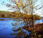 Autumn Highlights On The St Croix River - Minnesota Royaltyfria Foton