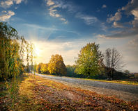 Autumn highway Stock Image