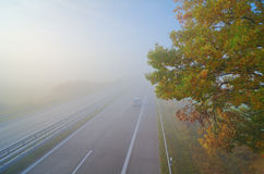 Autumn, highway, fog, foliage Stock Photos