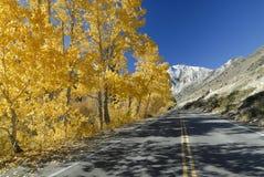 Autumn highway in Sierra Nevada mountains Royalty Free Stock Photos
