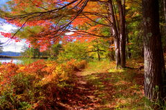 Autumn Hike Royalty Free Stock Images