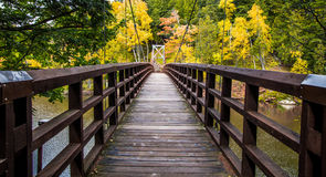 Autumn Hike In Michigan On The North Country Trail Stock Photo