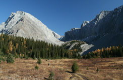 Autumn, hiker in meadow. Mts Galatea & Chester; folded rock formations;Chester Lake trailCanadian Rockies,Kananaskis,Alberta, Canada Stock Photography