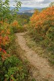 Hiking Trail at Brown Mountain Overlook royalty free stock photos