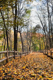 Autumn hiking trail. Autumn forest with yellow maple trees and colorful foliage in hiking trail, Toronto Stock Photo