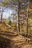 Autumn Hiking Trail in the Park Royalty Free Stock Photos