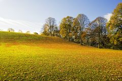 Autumn Hill. Wide Angle capture with stunning light and Color on abandoned public playing field covered with leaves on a bright cold day during November in royalty free stock photos