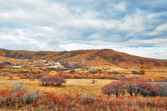 The autumn hill and cloudscape Stock Image