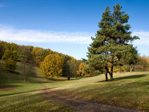 Autumn hills Stock Photography