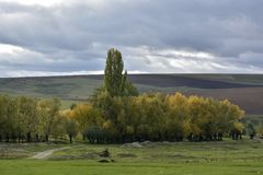The Autumn hills and meadows royalty free stock photography