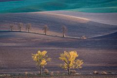 Autumn hills of Moravia Stock Image