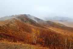 The autumn hills in rain Stock Image