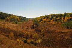 Autumn hills with trees and bushes. Autumn hills in Russia with trees and bushes Royalty Free Stock Image