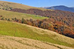 Autumn on a hillside Stock Photos