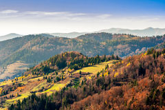 Autumn hillside with colorful foliage trees near valley at sunri Stock Photography