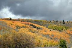Autumn Hillside Colors imagem de stock