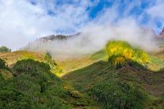 Autumn Hillside in Fog Stock Image