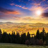 Autumn Hillside With Red And Yellow Forest At Sunset Royalty Free Stock Photos