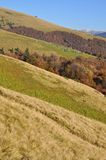 Autumn Hillsides. Royalty Free Stock Images