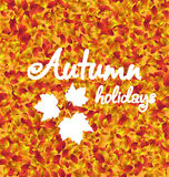 Autumn Holiday Background, texture de feuilles illustration libre de droits