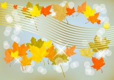 Autumn  holiday postcard Stock Photo