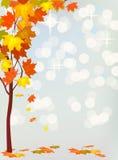 Autumn  holiday postcard Royalty Free Stock Image