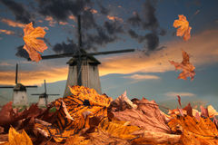 Autumn in Holland Royalty Free Stock Photos
