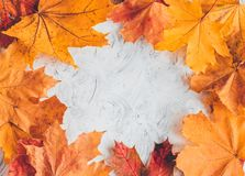 Free Autumn Home Cozy Composition With Maple Leaves. Royalty Free Stock Image - 157712236