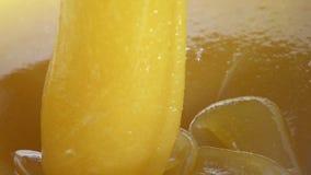 Autumn Honey stock footage
