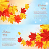Autumn horizontal banner. Autumn orange, red, yellow maple leaves in curved line on blue background. Realistic vector illustration. Concept for autumn seasonal vector illustration