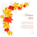 Autumn horizontal banner. Autumn orange, red, yellow maple leaves in curved line on white background. Cartoon vector illustration. Concept for autumn seasonal stock illustration