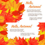Autumn horizontal banner. Two autumn horizontal banners with yellow, orange, red fallen leaves. Vector illustration. EPS10 vector illustration