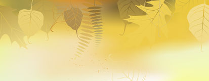 Autumn horizontal banner - vector illustration Stock Images