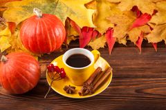 Autumn horizontal banner with yellow, red leaves, pumpkins, cup of coffee and guelder rose on brown wooden background. Royalty Free Stock Image
