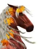 Autumn horse royalty free illustration