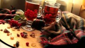Autumn winter viburnum Tea In A Transparent Glass Mug, Berries Of A Guelder-rose stock footage
