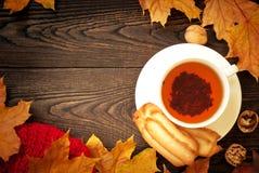 Autumn hot tea Stock Photos