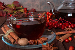 Autumn hot tea with spices and berries in glass cup Royalty Free Stock Photo