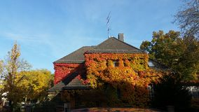Autumn House stock photo