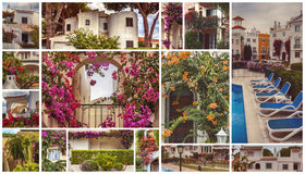 Autumn houses,  gardens and balconies in Portugal Stock Image
