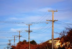 Autumn hued  electric cable poles Stock Photography
